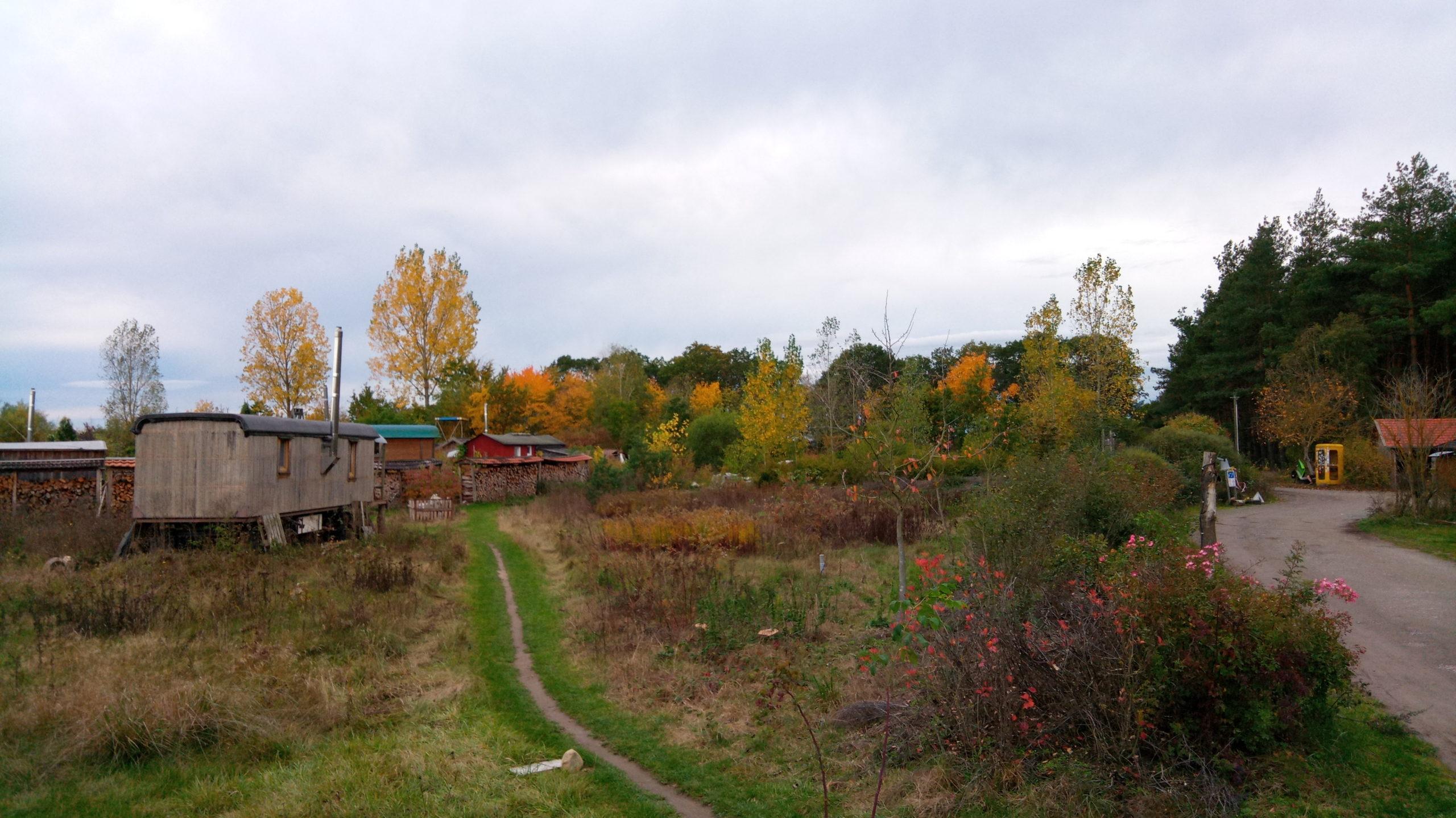 Zur Gästin im Ökodorf Sieben Linden